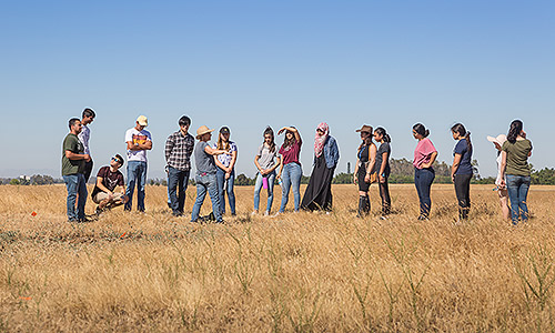 High school students in the STEP program were led on a tour of the UC Merced Vernal Pools and Grassland Reserve.
